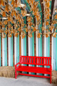 Red color chair in farm — Stock Photo