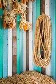 Rope in farm — Stock Photo