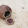 Coconut shell on the beach — Stock Photo