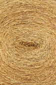 Dry straw roll — Stock fotografie