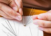 Insect entomology pins — Stock Photo