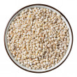 Barley grain — Stock Photo