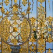 Catherine Palace behind the gates — Stock Photo