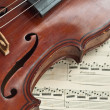 German violin of the nineteenth century. — Stock Photo