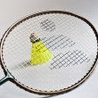 Badminton racket, shuttlecock on a white background. — Stok fotoğraf