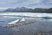 I campi di ghiaccio permanenti nel tideway del fiume yakut. — Foto Stock