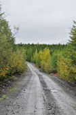 "Federal highway ""Kolyma"" in Yakutia. — Stockfoto"