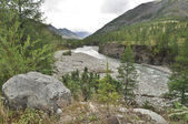 The river in mountains of Yakutia. — Stock Photo