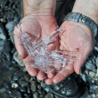 Crystals of ice from a glacier in human hands. — Stock Photo #45030877