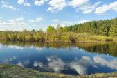 Spring landscape forest river. — Stock Photo