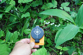 Compass in hand, against the background of blooming lilies. — Stock Photo