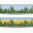 Banners with grass - Stock Vector