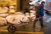 Mercato ittico di Tsukiji a tokyo Giappone — Foto Stock