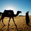 Camel walking through desert — Stock Photo #19416005