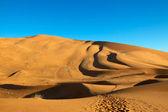 Desert Dunes — Stock Photo