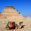 Step Pyramid of Djoser in Saqqara, Egypt — Stock Photo