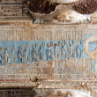 Ancient Egyptian hieroglyphs and carved paintings - Stock Photo
