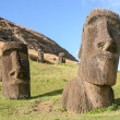 Stock Photo: Several moai at Rano Raraku, Easter Island