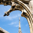Detail of the Duomo di Milano in Milan, Italy — Stock Photo