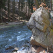 Boulder at the Freiberger Mulde — Stock Photo