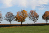 Herfst op het platteland — Stockfoto