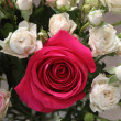 Stock Photo: Bouquet of rosesbed