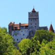 Bran Castle — Stock Photo #28941679