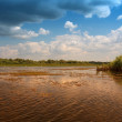 Danube Delta — Stock Photo