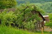 The old barn — Stock Photo