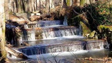 Flowing brook — ストックビデオ