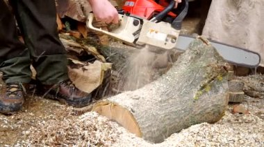 Chainsaw cutting wood — Stock Video