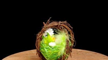 Ostern dekoration — Stockvideo