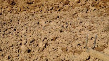 Hoeing soil — Stock Video