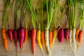 Organic Carrots — Stock Photo