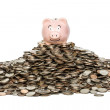 Stock Photo: Piggybank Savings