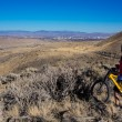 Mt Bike Over Reno — Stock Photo #39804525