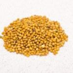 Mustard seed — Stock Photo #18988039