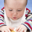 Stock Photo: Messy baby boy focuses on rusk
