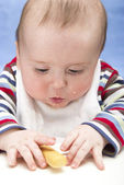 Messy baby boy focuses on rusk — Stock Photo