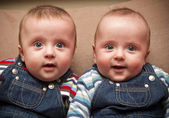 Twin boys in overalls — Stock Photo