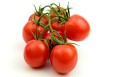 Tomatoes, isolated — Stock Photo