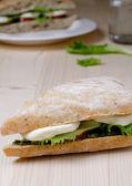 Panino mozzarella pomodoro — Foto Stock