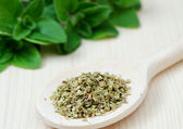 Dried oregano on wooden spoon — Stock Photo
