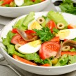 Salad Nicoise — Stock Photo #27499751