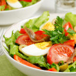 Salad Nicoise — Stock Photo #27499917