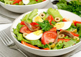 Salad Nicoise — Stock Photo