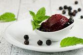 Blackcurrant sorbet — Stock Photo