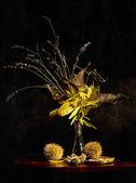 Herbst zusammensetzung — Stockfoto
