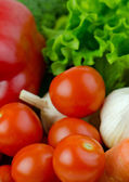 Various Vegetables, close up — Stock Photo