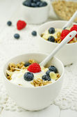 Granola with yogurt and fresh berries — Stock Photo